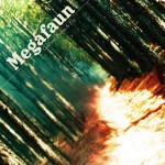 gather form and fly - megafaun
